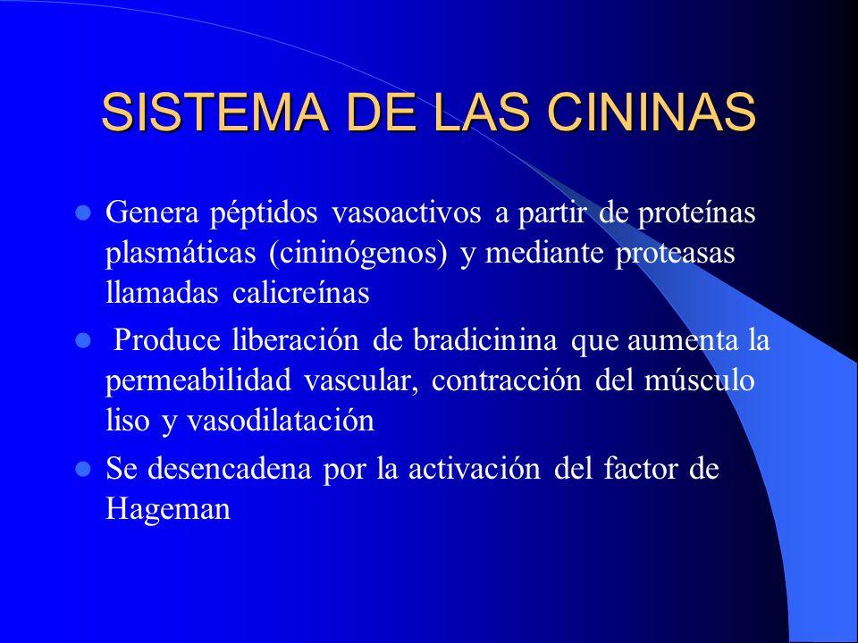 SISTEMA DE LAS CININAS Genera péptidos vasoactivos a partir de proteínas plasmáticas (cininógenos) y mediante proteasas llamadas calicreínas.
