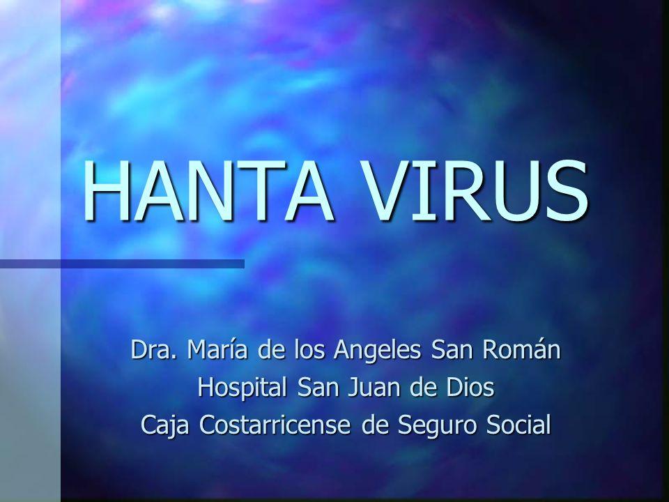 HANTA VIRUS Dra. María de los Angeles San Román