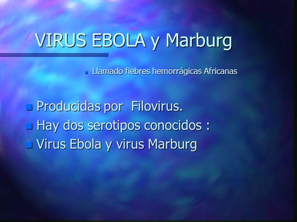 VIRUS EBOLA y Marburg Producidas por Filovirus.