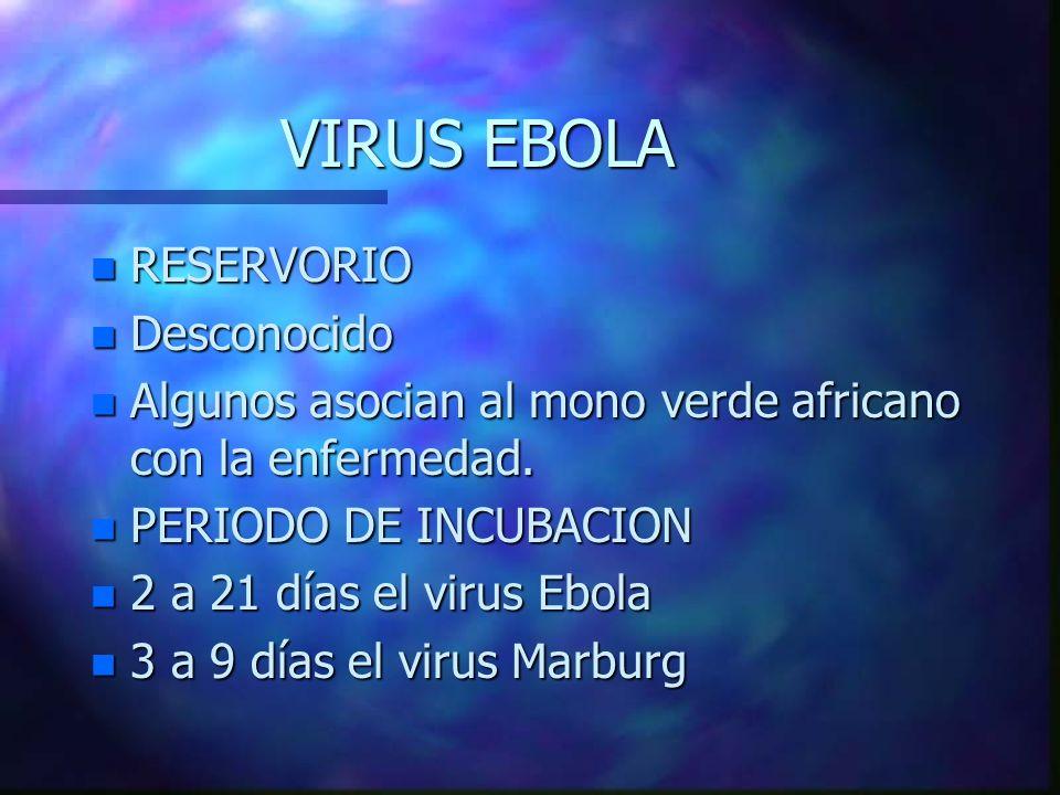 VIRUS EBOLA RESERVORIO Desconocido