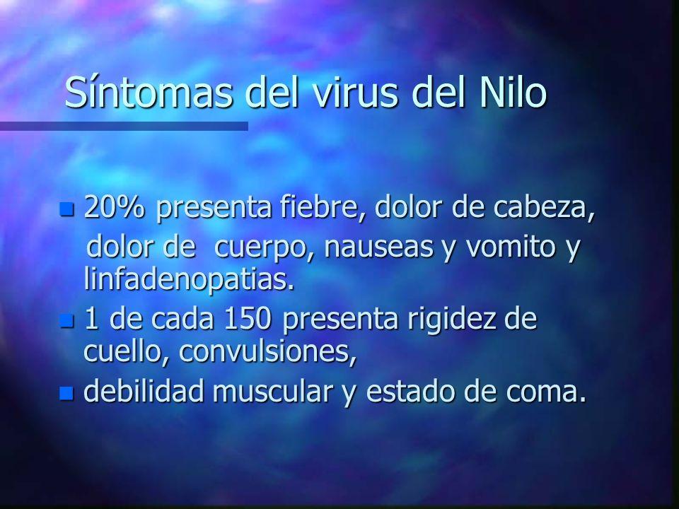 Síntomas del virus del Nilo