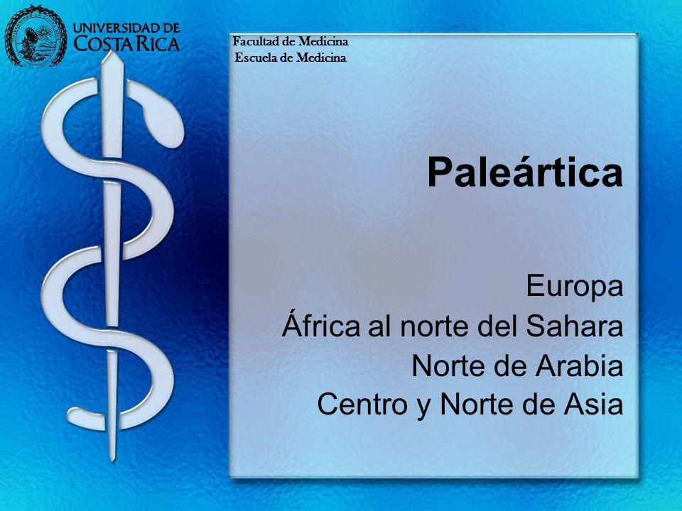 Paleártica Europa África al norte del Sahara Norte de Arabia