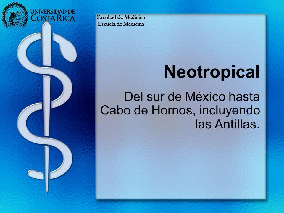 Del sur de México hasta Cabo de Hornos, incluyendo las Antillas.