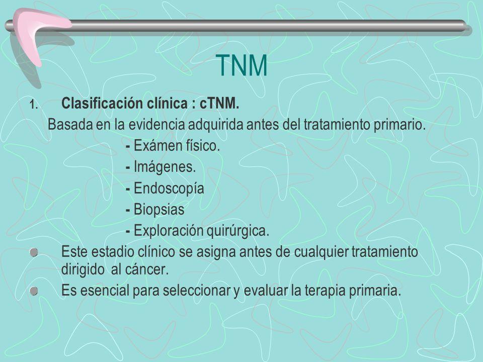 TNM Clasificación clínica : cTNM.