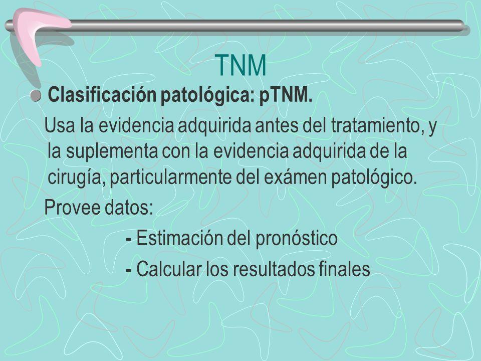 TNM Clasificación patológica: pTNM.