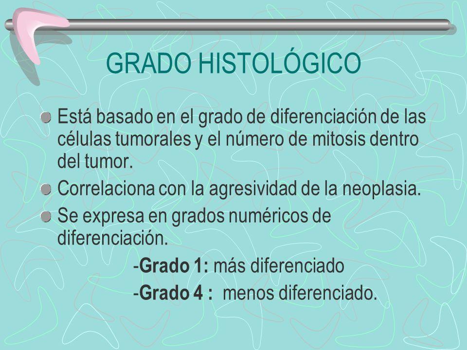 GRADO HISTOLÓGICO Está basado en el grado de diferenciación de las células tumorales y el número de mitosis dentro del tumor.