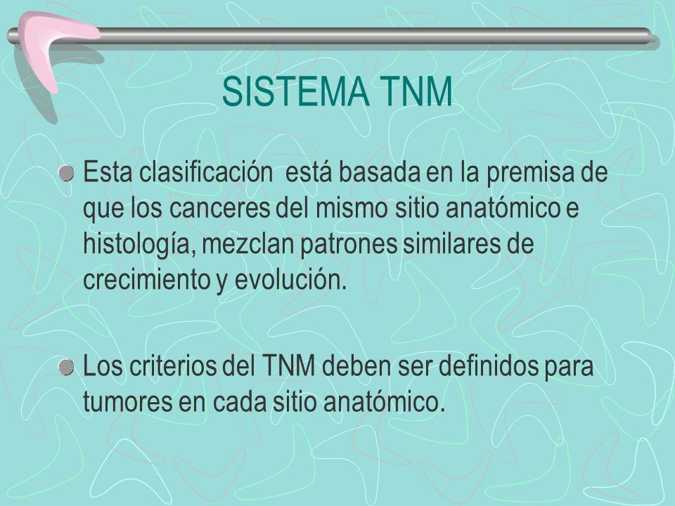 SISTEMA TNM