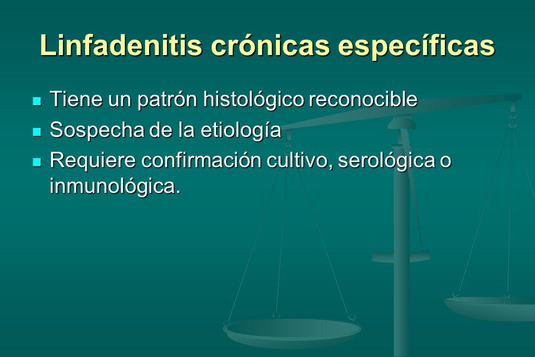 Linfadenitis crónicas específicas