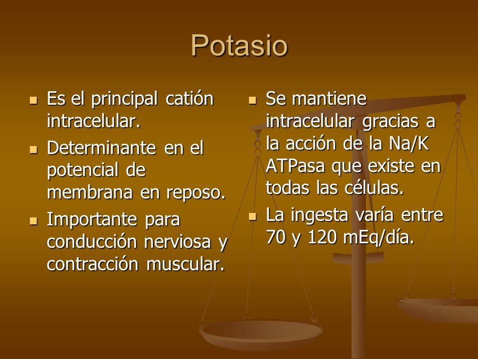 Potasio Es el principal catión intracelular.