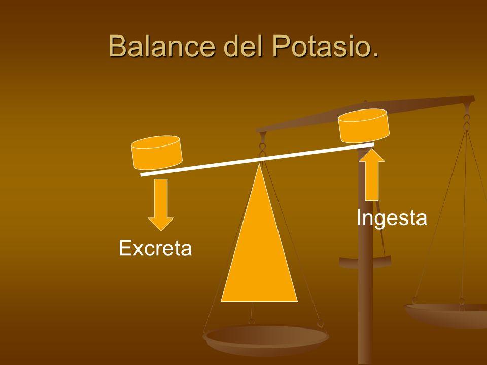 Balance del Potasio. Ingesta Excreta