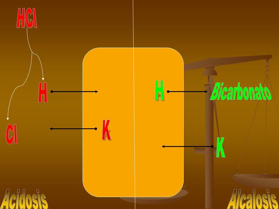 HCl H H Bicarbonato K Cl K Acidosis Alcalosis