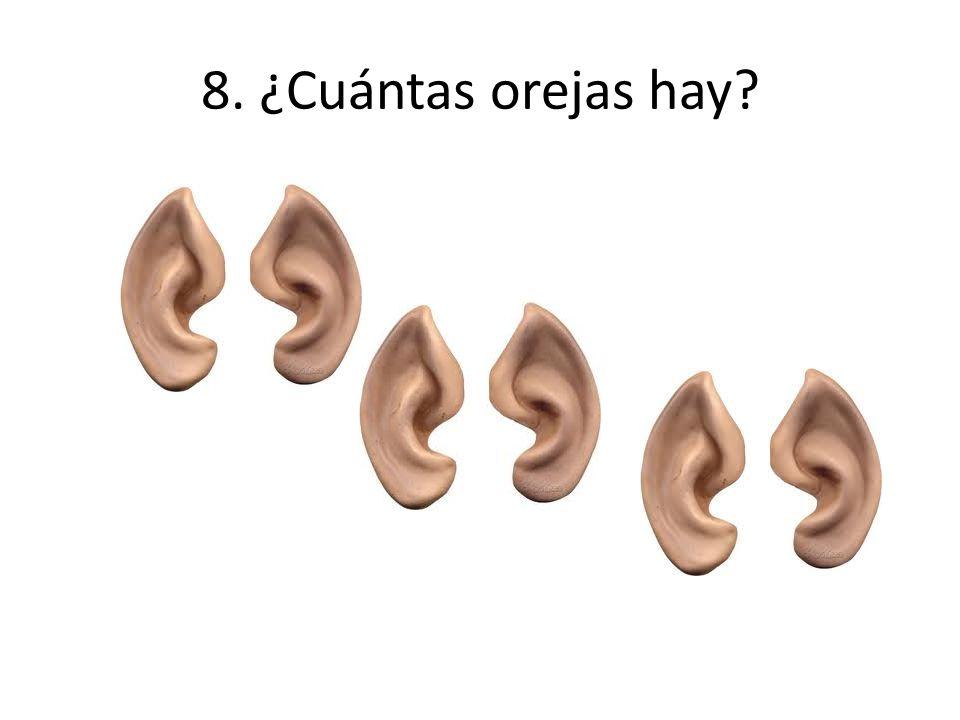 8. ¿Cuántas orejas hay
