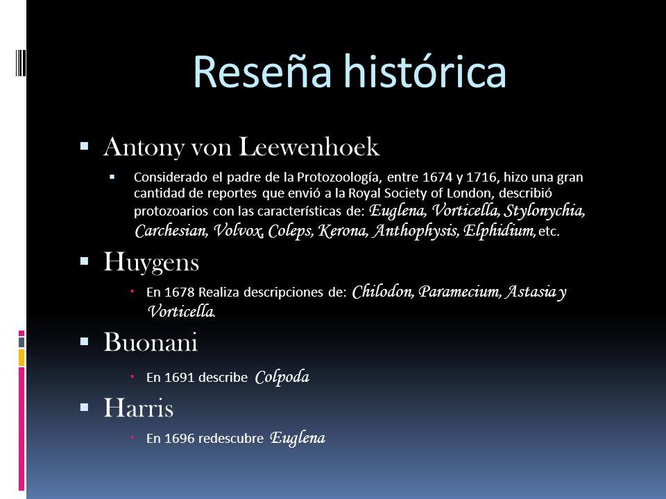 Reseña histórica Antony von Leewenhoek Huygens Buonani Harris