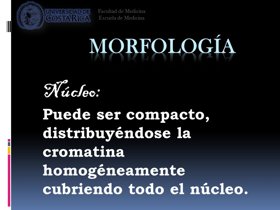 Facultad de Medicina Escuela de Medicina. Morfología. Núcleo: