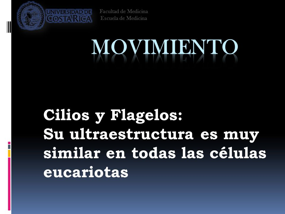 Movimiento Cilios y Flagelos: