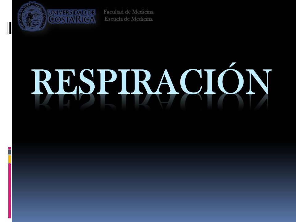 Facultad de Medicina Escuela de Medicina Respiración 2008