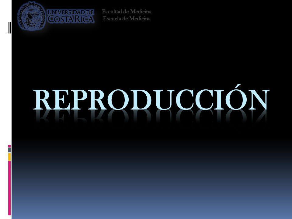 Facultad de Medicina Escuela de Medicina Reproducción 2008