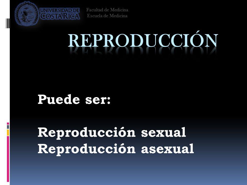 Puede ser: Reproducción sexual Reproducción asexual