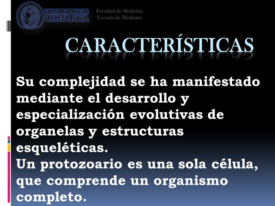Facultad de Medicina Escuela de Medicina. Características.