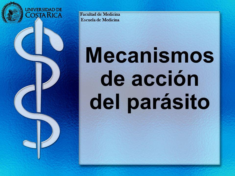 Mecanismos de acción del parásito