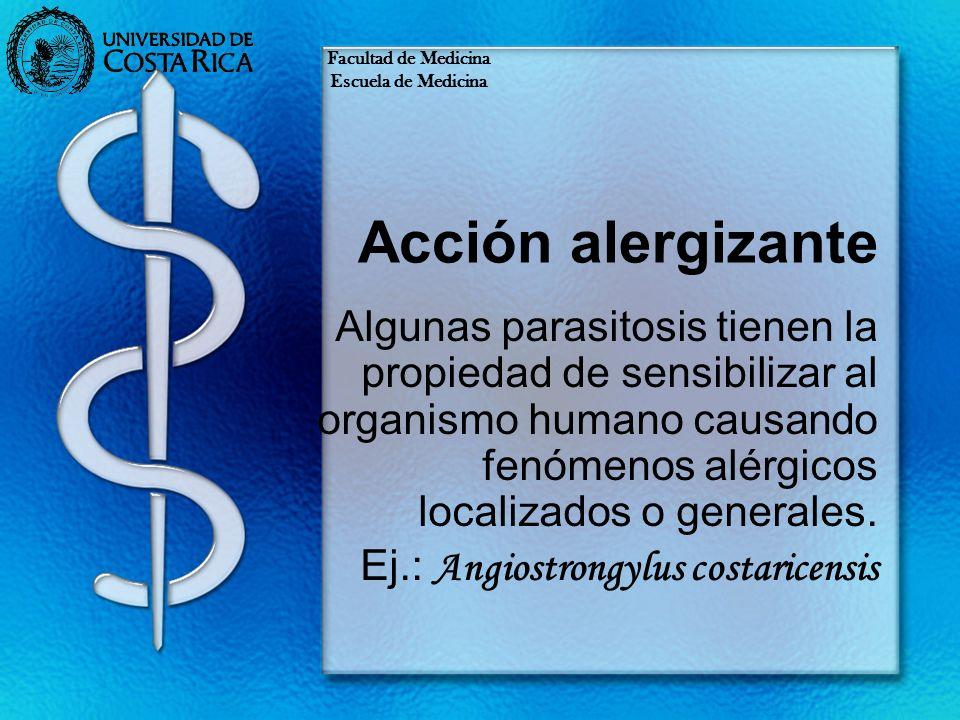 Facultad de Medicina Escuela de Medicina. Acción alergizante.