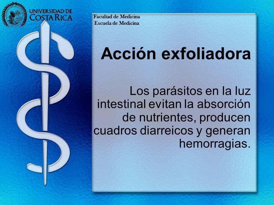 Facultad de Medicina Escuela de Medicina. Acción exfoliadora.