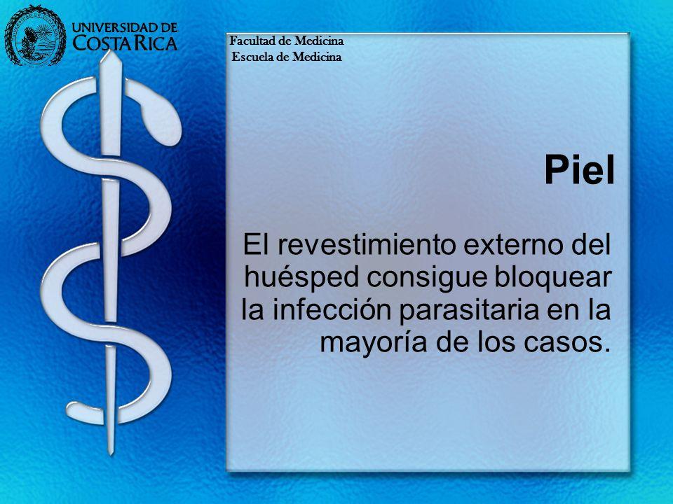 Facultad de MedicinaEscuela de Medicina. Piel.
