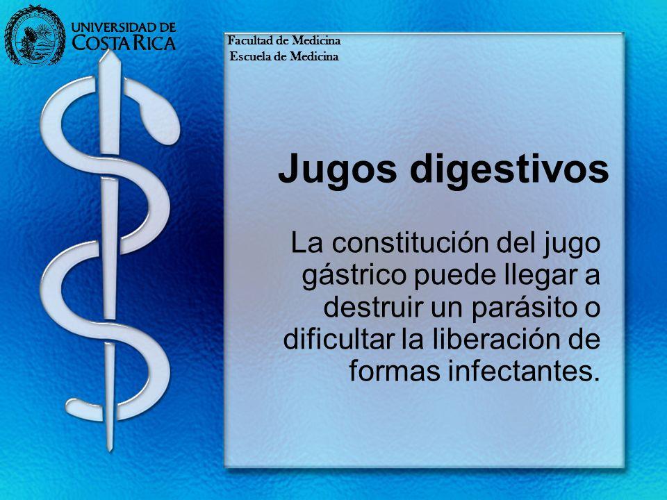 Facultad de MedicinaEscuela de Medicina. Jugos digestivos.