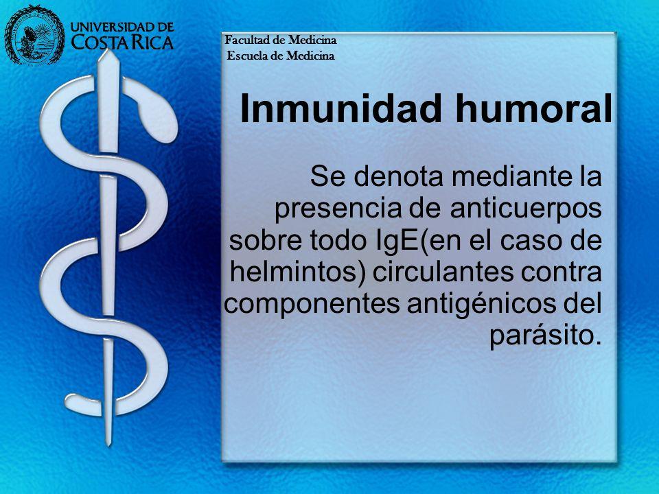 Facultad de Medicina Escuela de Medicina. Inmunidad humoral.