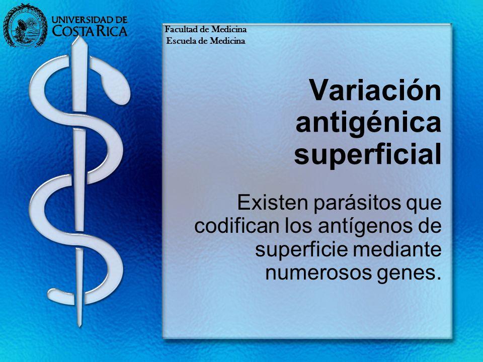 Variación antigénica superficial