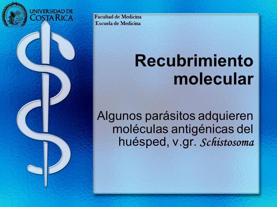 Recubrimiento molecular