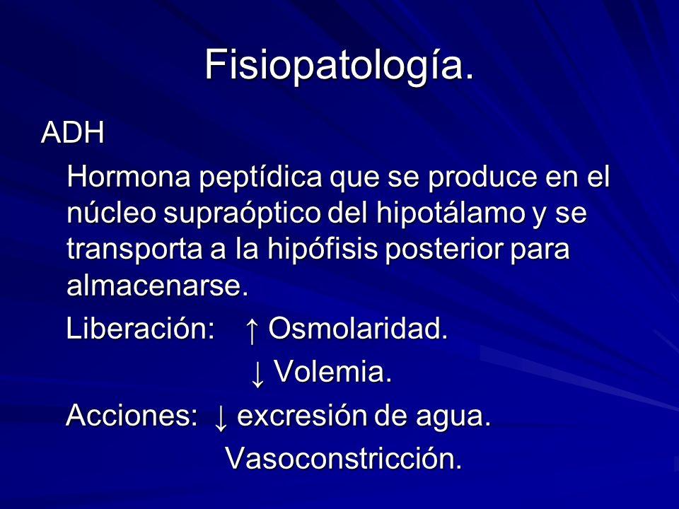 Fisiopatología. ADH.