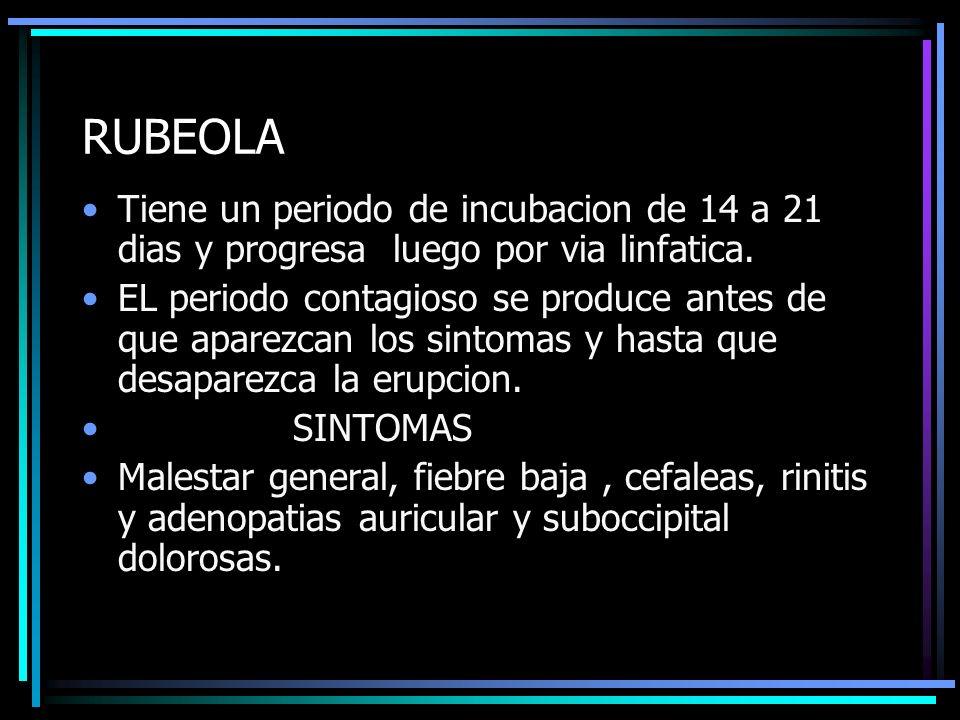 RUBEOLA Tiene un periodo de incubacion de 14 a 21 dias y progresa luego por via linfatica.