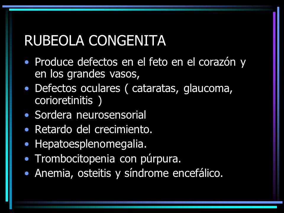 RUBEOLA CONGENITA Produce defectos en el feto en el corazón y en los grandes vasos, Defectos oculares ( cataratas, glaucoma, corioretinitis )