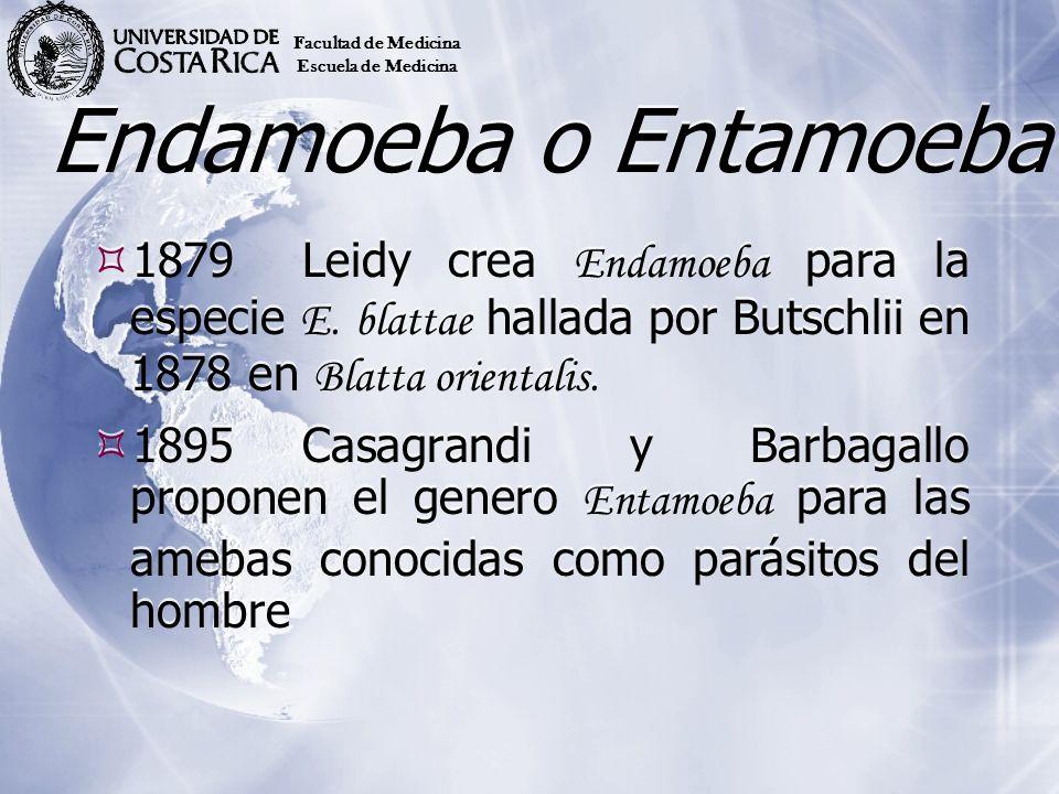 Facultad de MedicinaEscuela de Medicina. Endamoeba o Entamoeba.