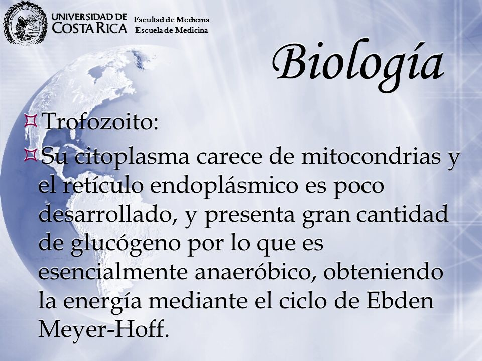 Facultad de Medicina Escuela de Medicina. Biología. Trofozoito:
