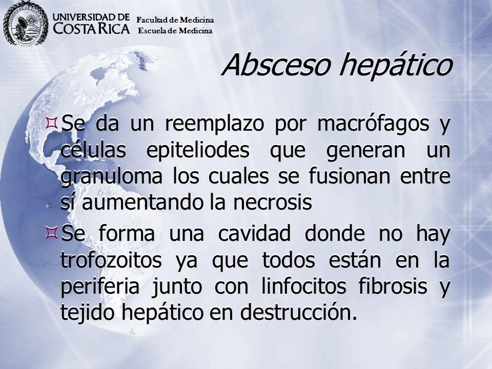Facultad de Medicina Escuela de Medicina. Absceso hepático.
