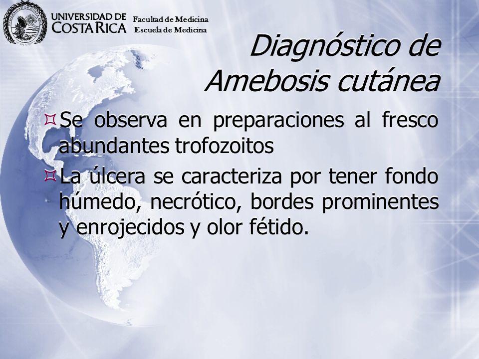 Diagnóstico de Amebosis cutánea