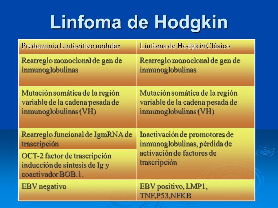 Linfoma de Hodgkin Predominio Linfocítico nodular