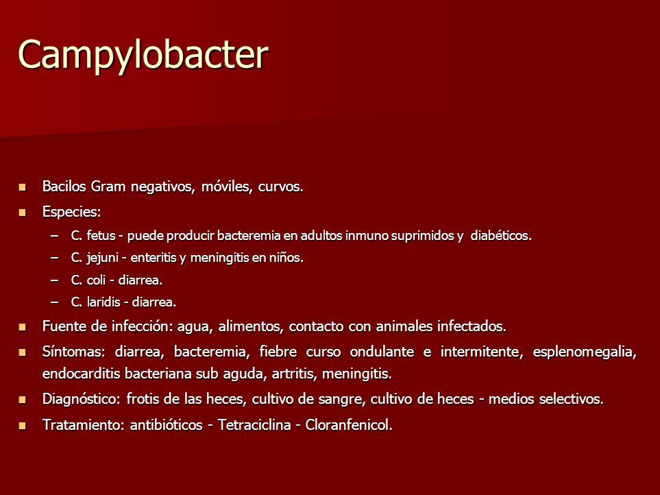 Campylobacter Bacilos Gram negativos, móviles, curvos. Especies: