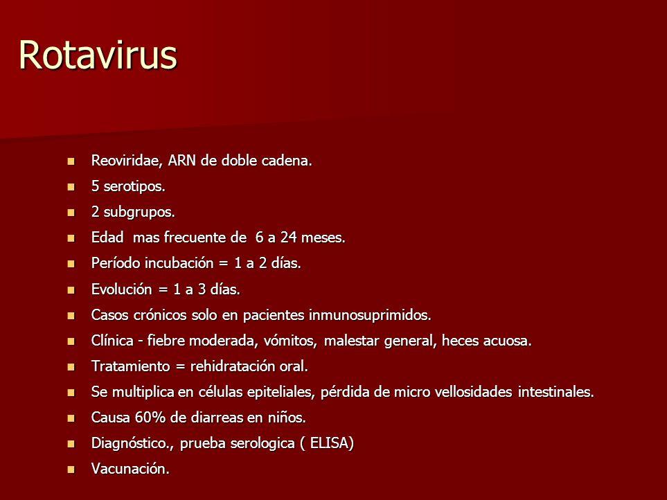 Rotavirus Reoviridae, ARN de doble cadena. 5 serotipos. 2 subgrupos.