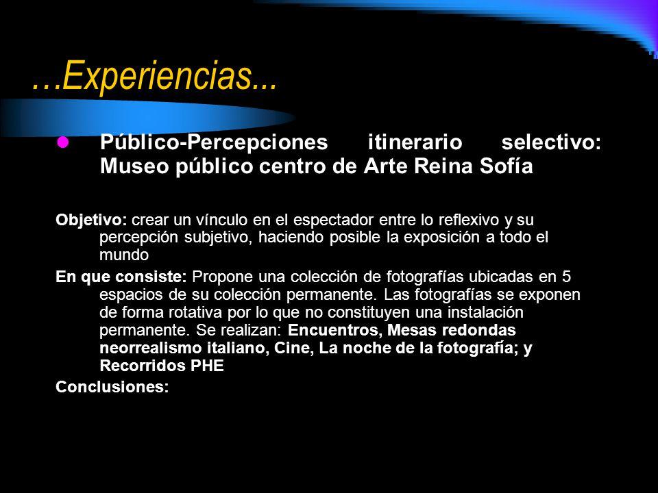 …Experiencias... Público-Percepciones itinerario selectivo: Museo público centro de Arte Reina Sofía.