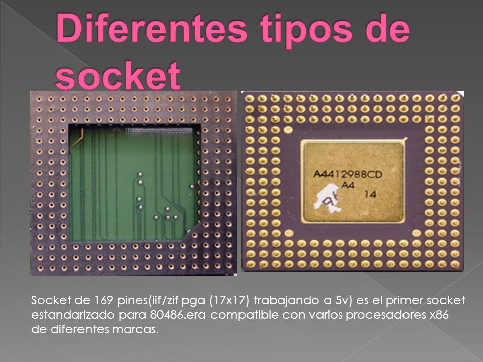 Diferentes tipos de socket