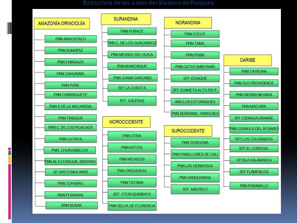 Estructura de las Áreas del Sistema de Parques