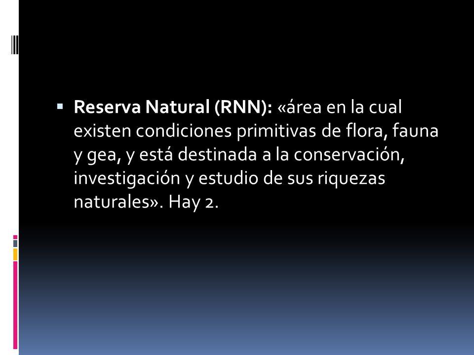 Reserva Natural (RNN): «área en la cual existen condiciones primitivas de flora, fauna y gea, y está destinada a la conservación, investigación y estudio de sus riquezas naturales».