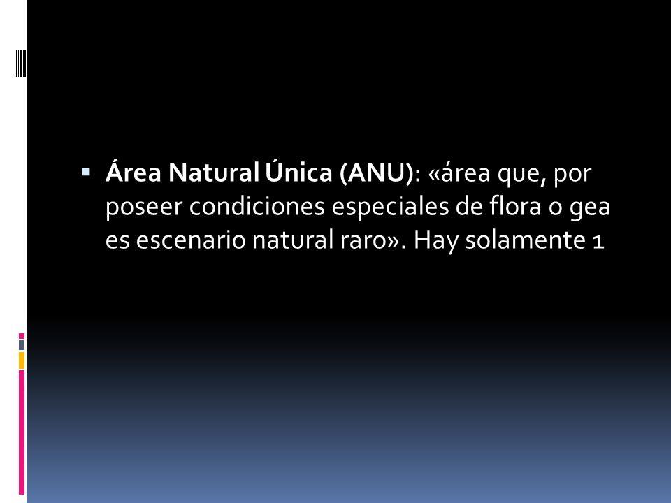 Área Natural Única (ANU): «área que, por poseer condiciones especiales de flora o gea es escenario natural raro».