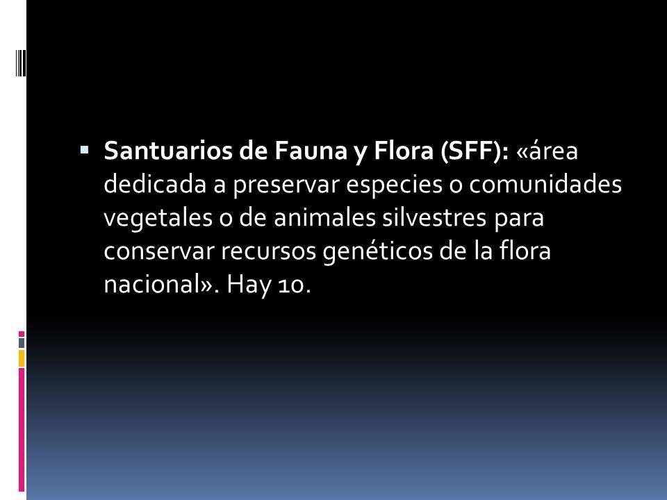 Santuarios de Fauna y Flora (SFF): «área dedicada a preservar especies o comunidades vegetales o de animales silvestres para conservar recursos genéticos de la flora nacional».