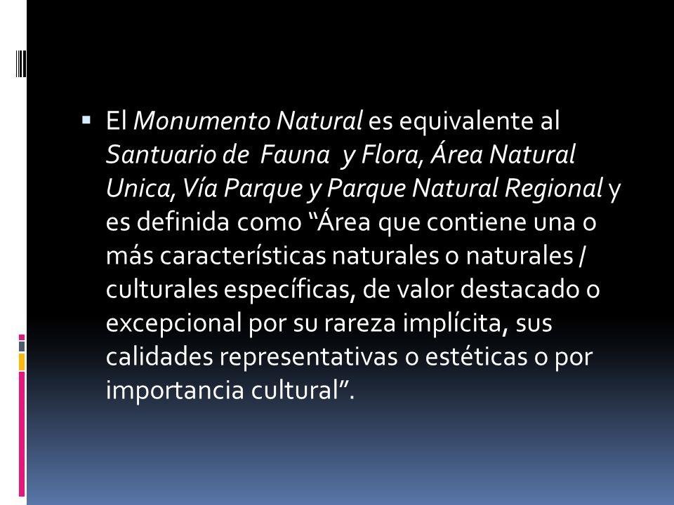 El Monumento Natural es equivalente al Santuario de Fauna y Flora, Área Natural Unica, Vía Parque y Parque Natural Regional y es definida como Área que contiene una o más características naturales o naturales / culturales específicas, de valor destacado o excepcional por su rareza implícita, sus calidades representativas o estéticas o por importancia cultural .