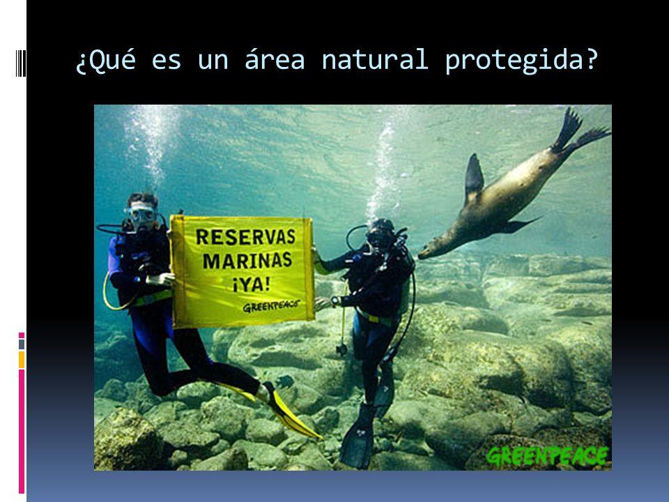 ¿Qué es un área natural protegida