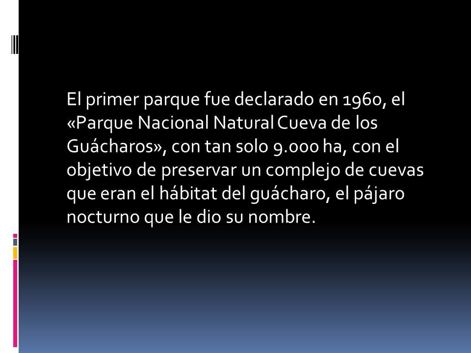 El primer parque fue declarado en 1960, el «Parque Nacional Natural Cueva de los Guácharos», con tan solo 9.000 ha, con el objetivo de preservar un complejo de cuevas que eran el hábitat del guácharo, el pájaro nocturno que le dio su nombre.